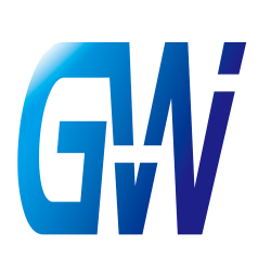 Моноколеса GotWay (11)